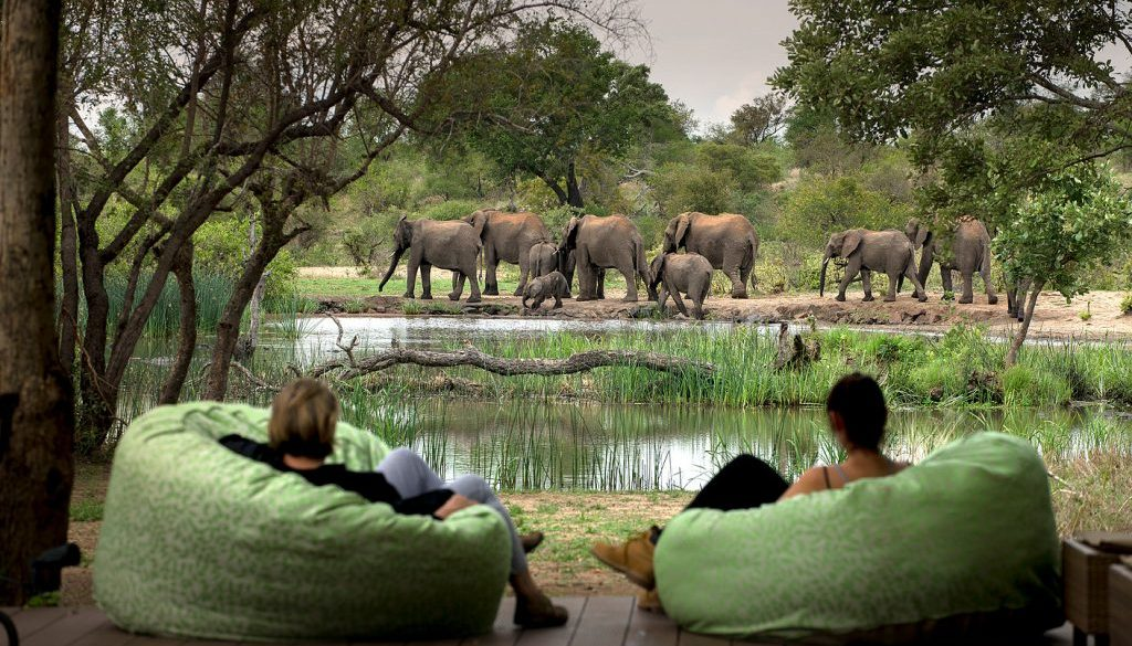 Tanda Tula, Timbavati Private Game Reserve | Made in Africa Tours and  Safaris