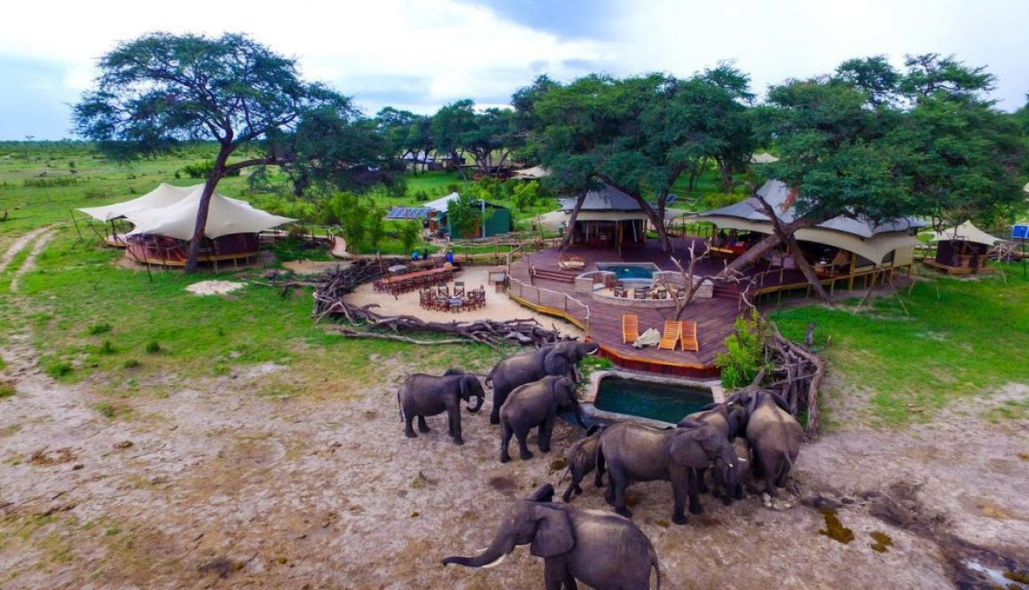 Luxury Camp Somalisa, with visiting elephants