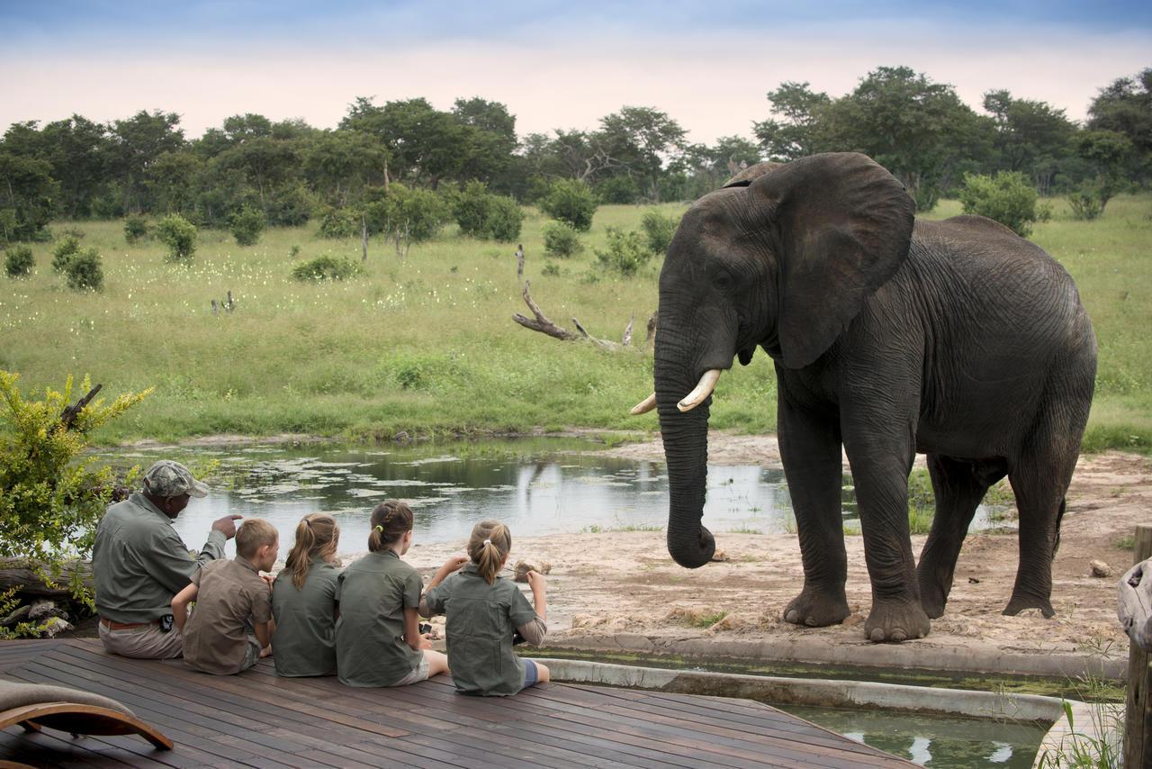 Family safari, Zimbabwe3