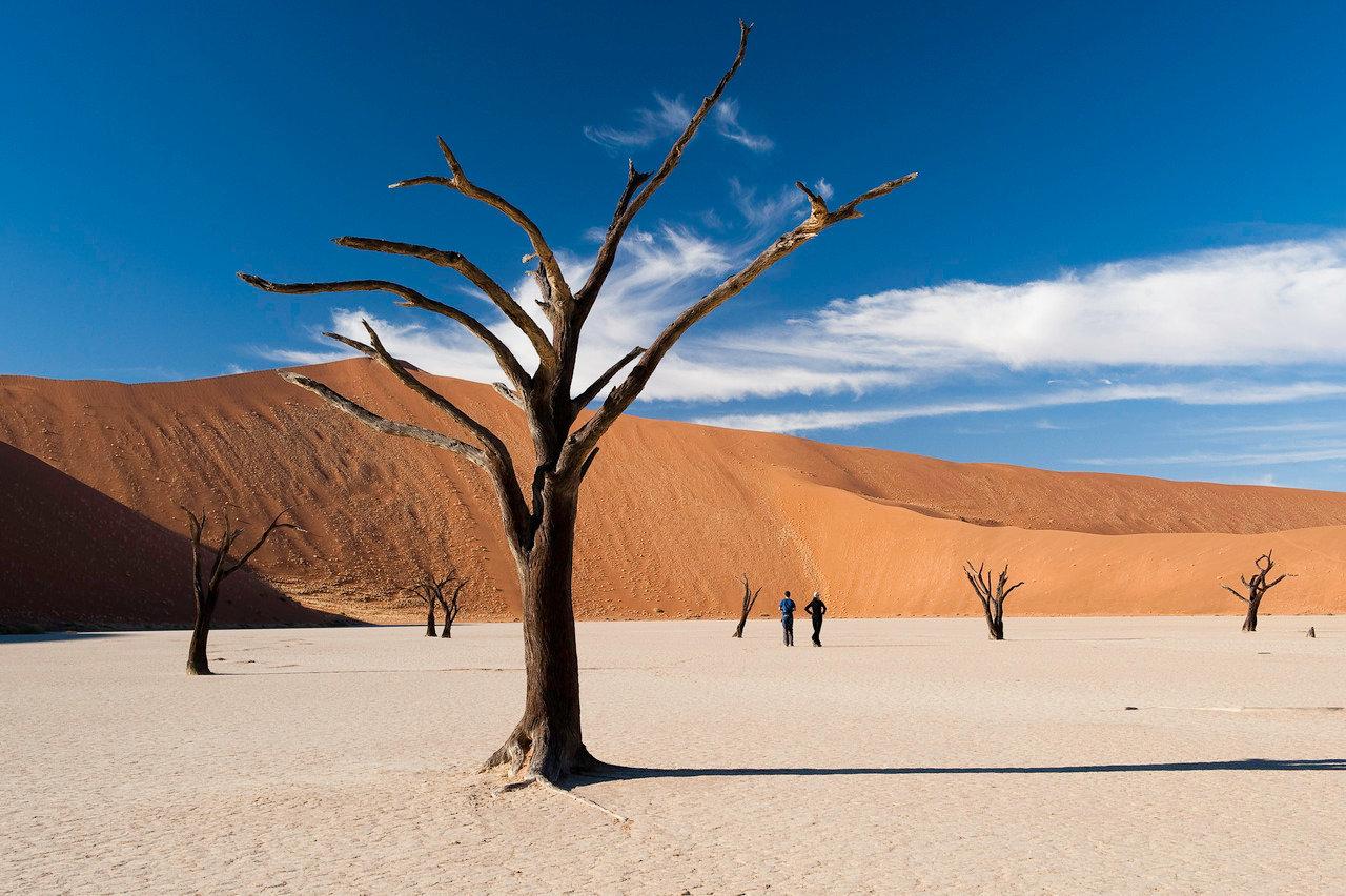 Namibia family safari3