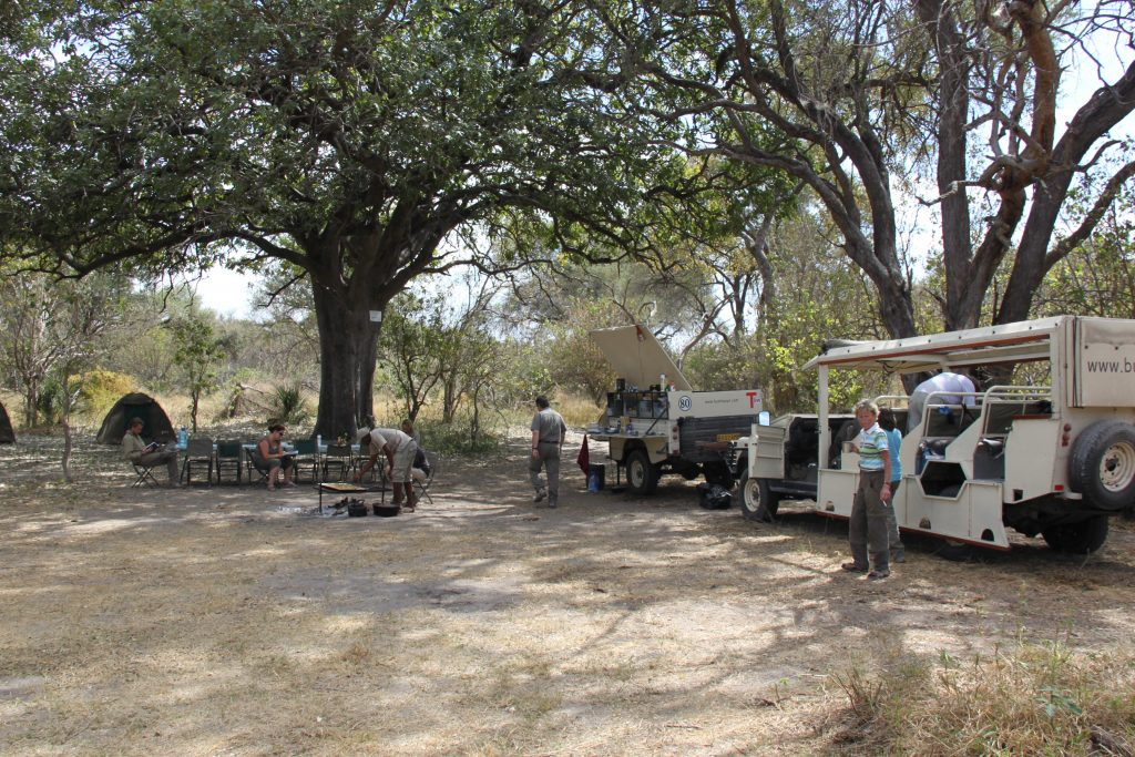 Botswana Highlights Camping Safari (10)