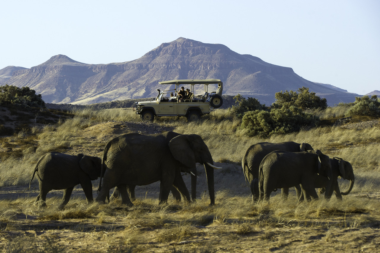 Southern Africa safari trips, elephants in Namibia