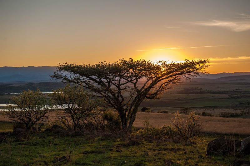 Made in Africa Tours & Safaris - Berg & Bush Self - Drakensburg Scenery