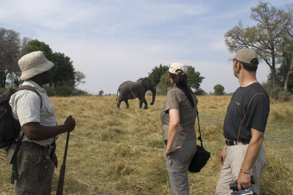 Made in Africa Tours & Safaris - Best of Botswana Lodge Safari - Linyanti game walk