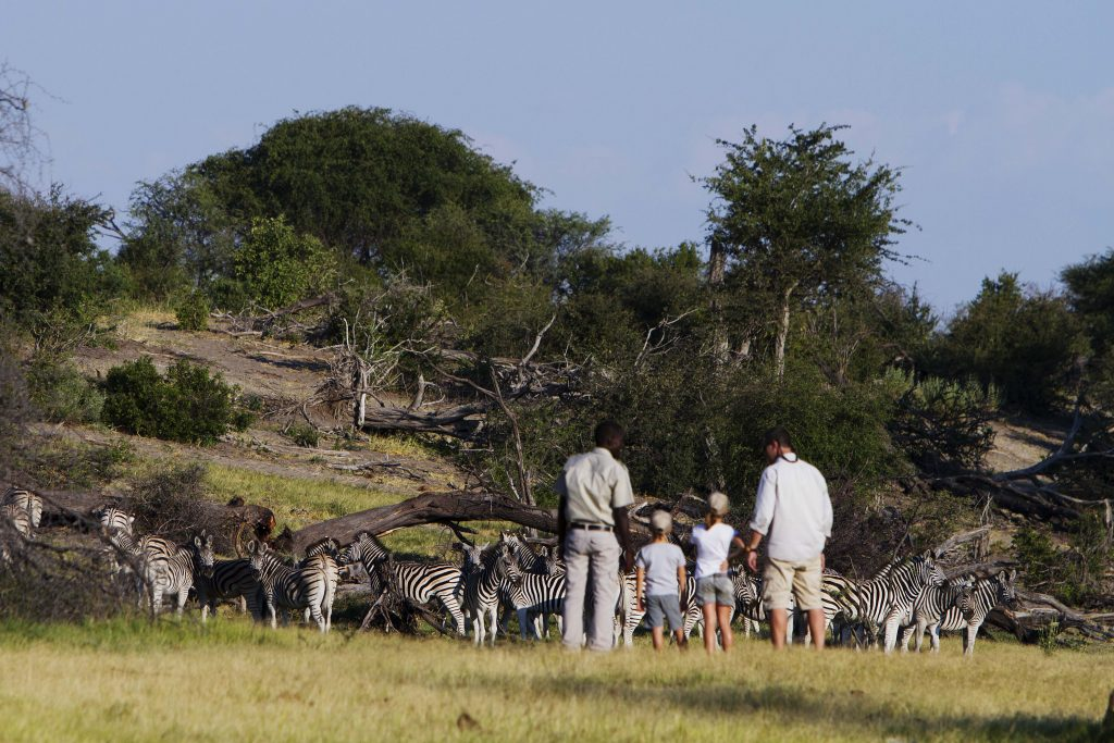 Made in Africa Tours & Safaris - Botswana Family Lodge Safari - Makgadikgadi Pan Game Walk with Kids