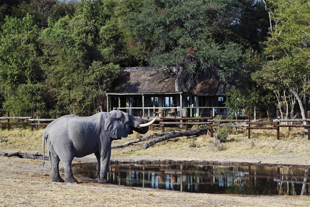 Made in Africa Tours & Safaris - Botswana Family Lodge Safari - Savuti Safari Lodge