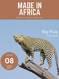 Guide to the best Big Five safaris and tours