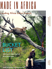 Bucket list safari guide