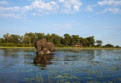 Botswana big five safari, Okavango Delta