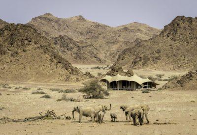 Namibia lodge safari elephants