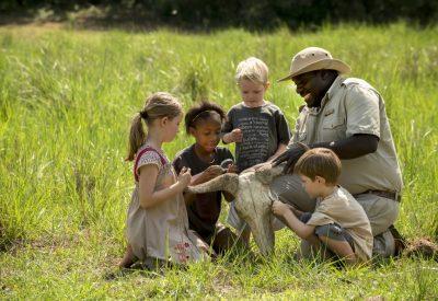 Family safari Zimbabwe