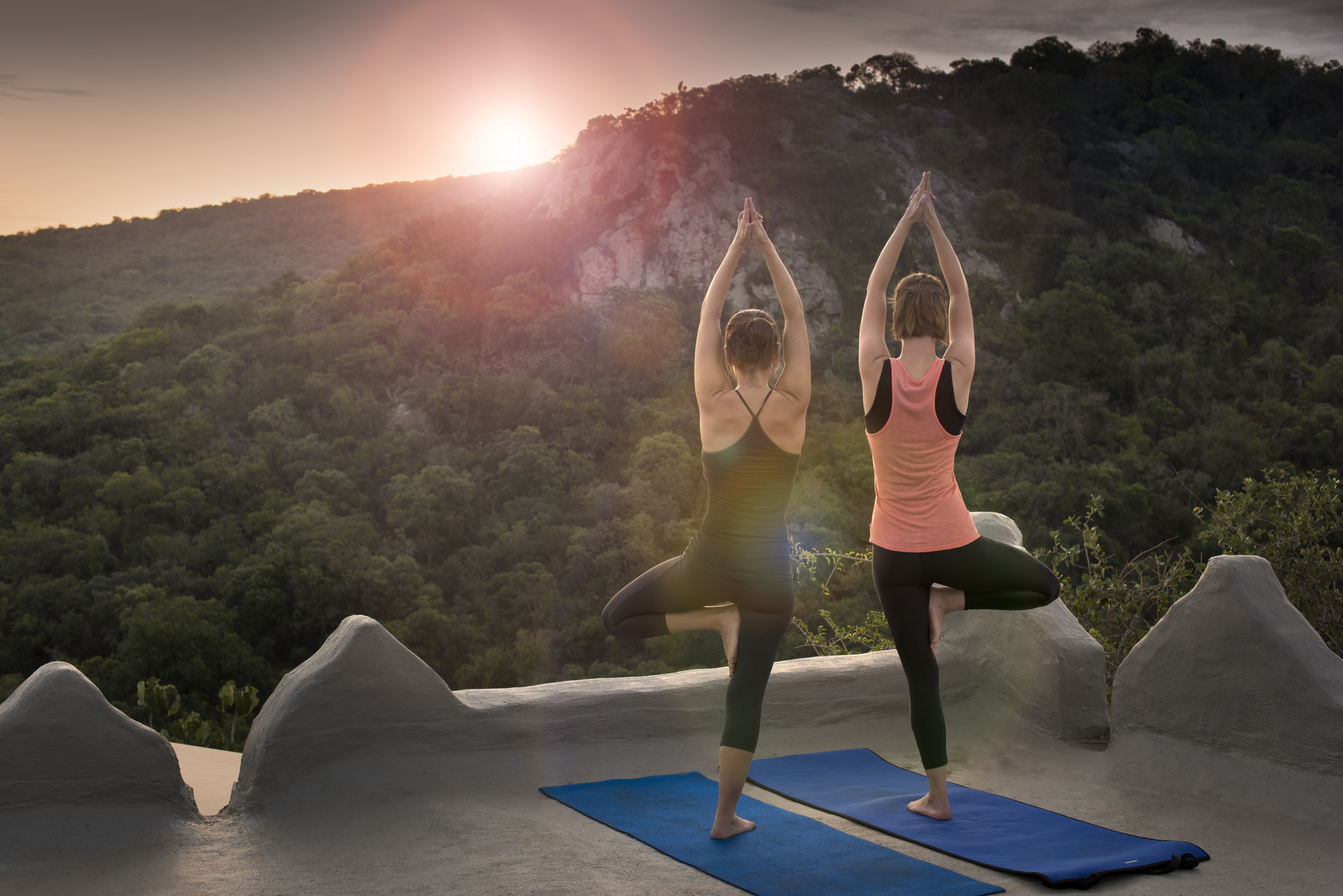 Yoga safari south africa, wellness travel