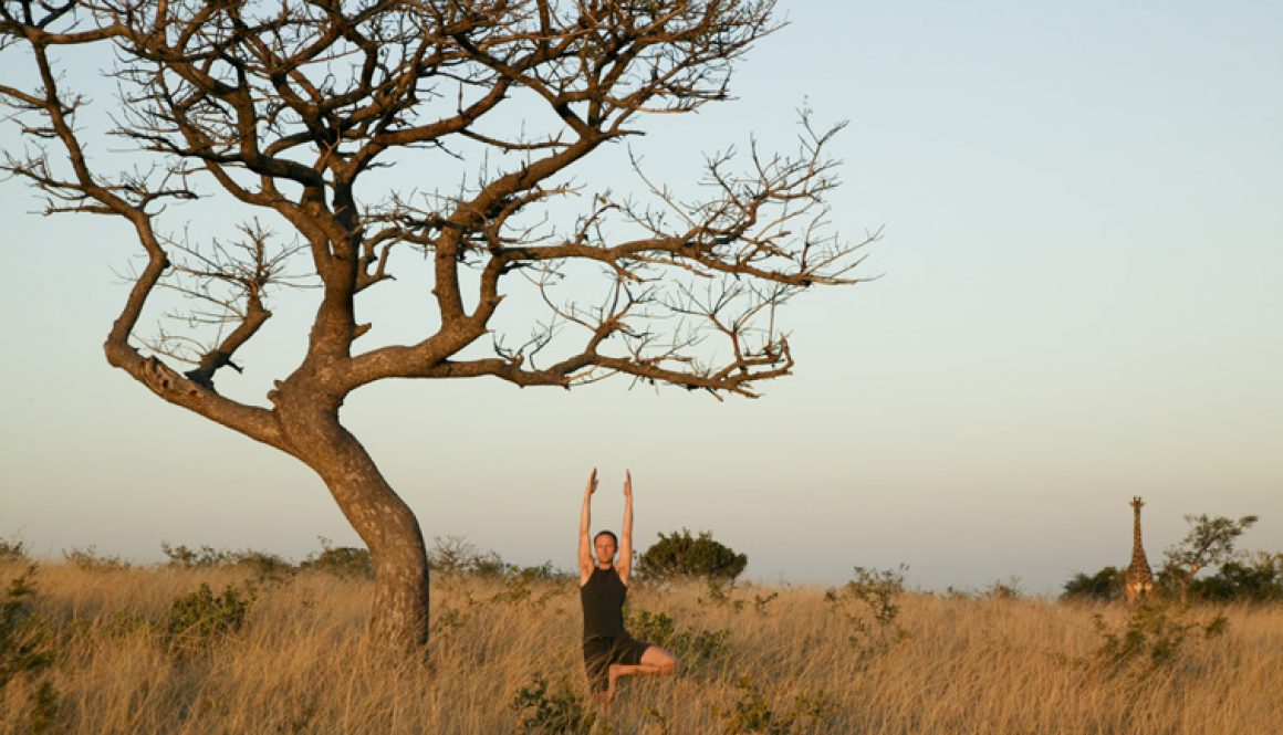 Yoga safari Phinda Private Game Reserve South Africa