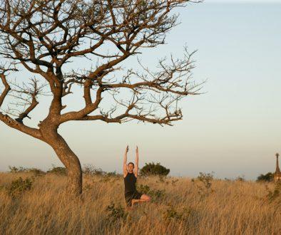 Yoga safari Phinda Private Game Reserve South Africa