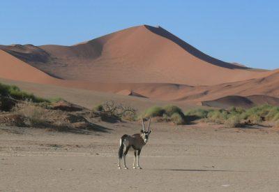 Classic Namibia Mobile Safari