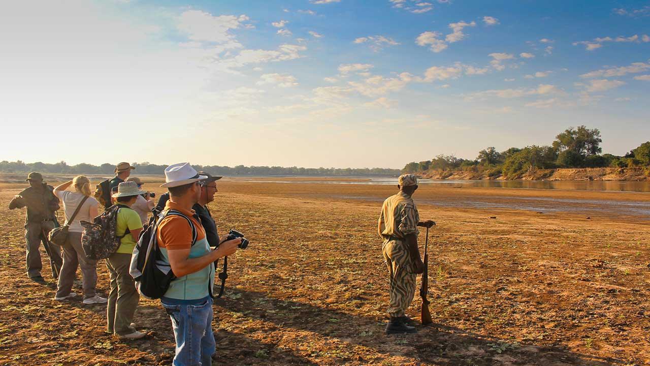 Zambia & Malawi Exploration - South Luangwa Game Walk