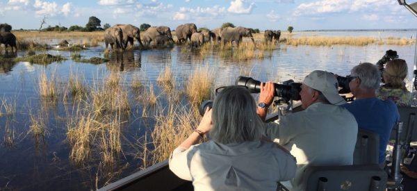Botswana Photography Safari