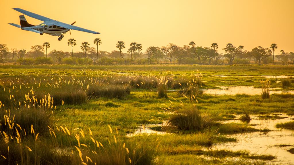 Botswana-Private-Reserve-Lodge-Safari---Light-Air-Transfer - Copy