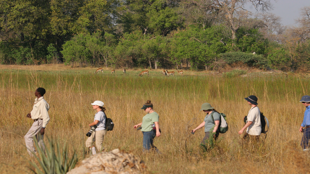 Botswana-Roundabout---Okavango-Delta-guided-game-walk