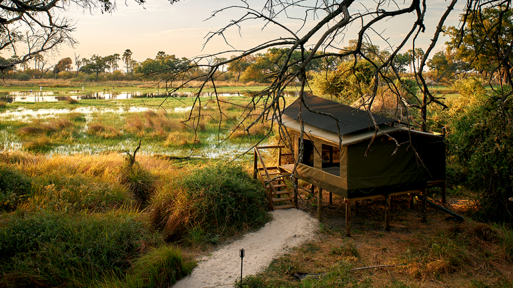 Botswana-Family-Adventure-Safari---Oddballs-Camp-Tent