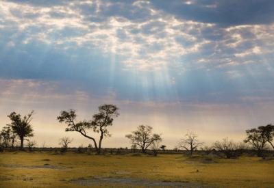 Highlights of Botswana Camping Safari