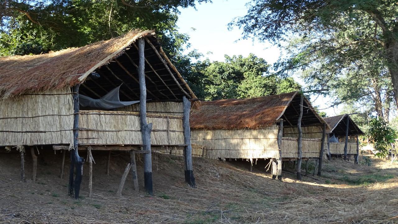South-Luangwa-Lodge---Wild-Zambia-Safari
